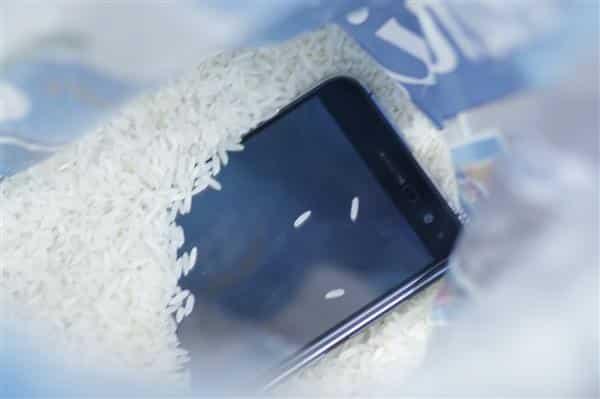 o que fazer quando celular cai na agua